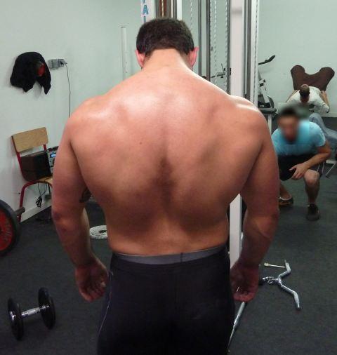 Programme de musculation pour le dos de gil pinheiro for Musculation volume