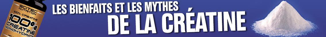 creatine mythes et réalité