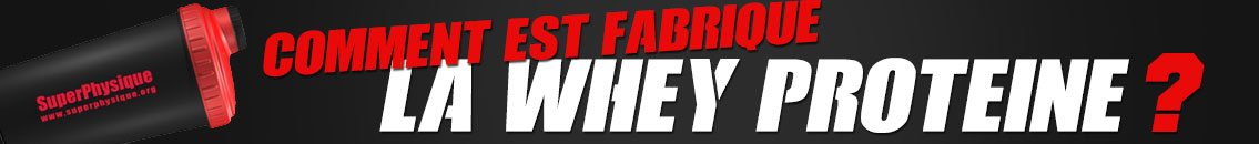 fabrication whey proteine
